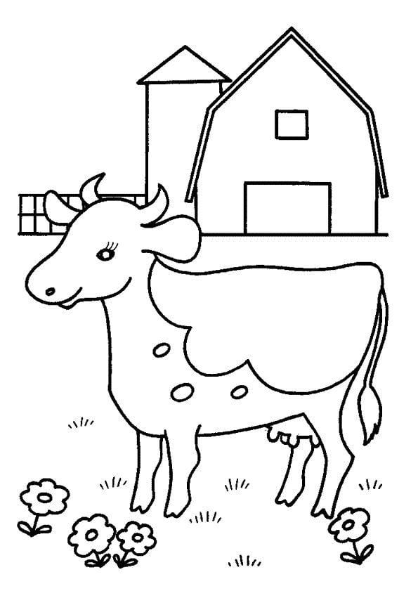 Kleurplaat koe