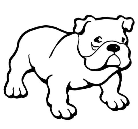 bulldog kleurplaen