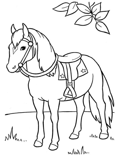 kleurplaat paard in wei
