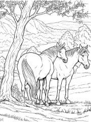 paarden kleurplaat onder boom